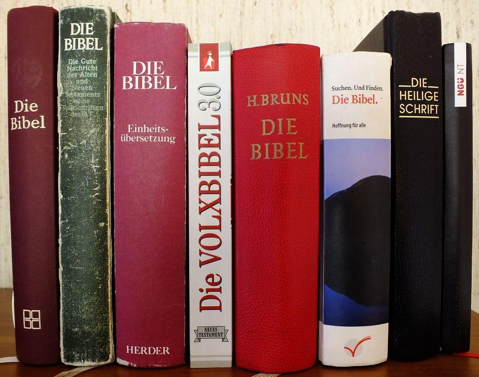 Bibeln (Bild: Der Weg)