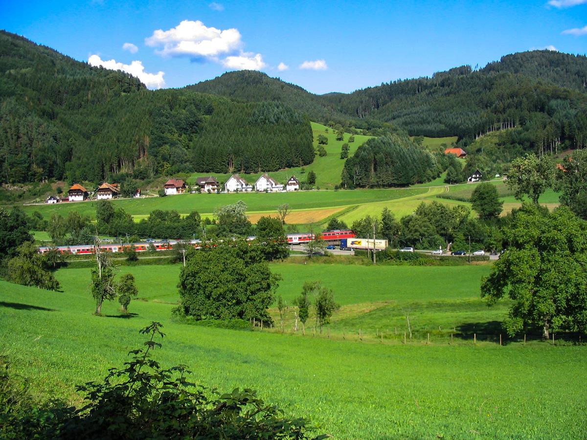 Schwarzwald (Bild: Der Weg)