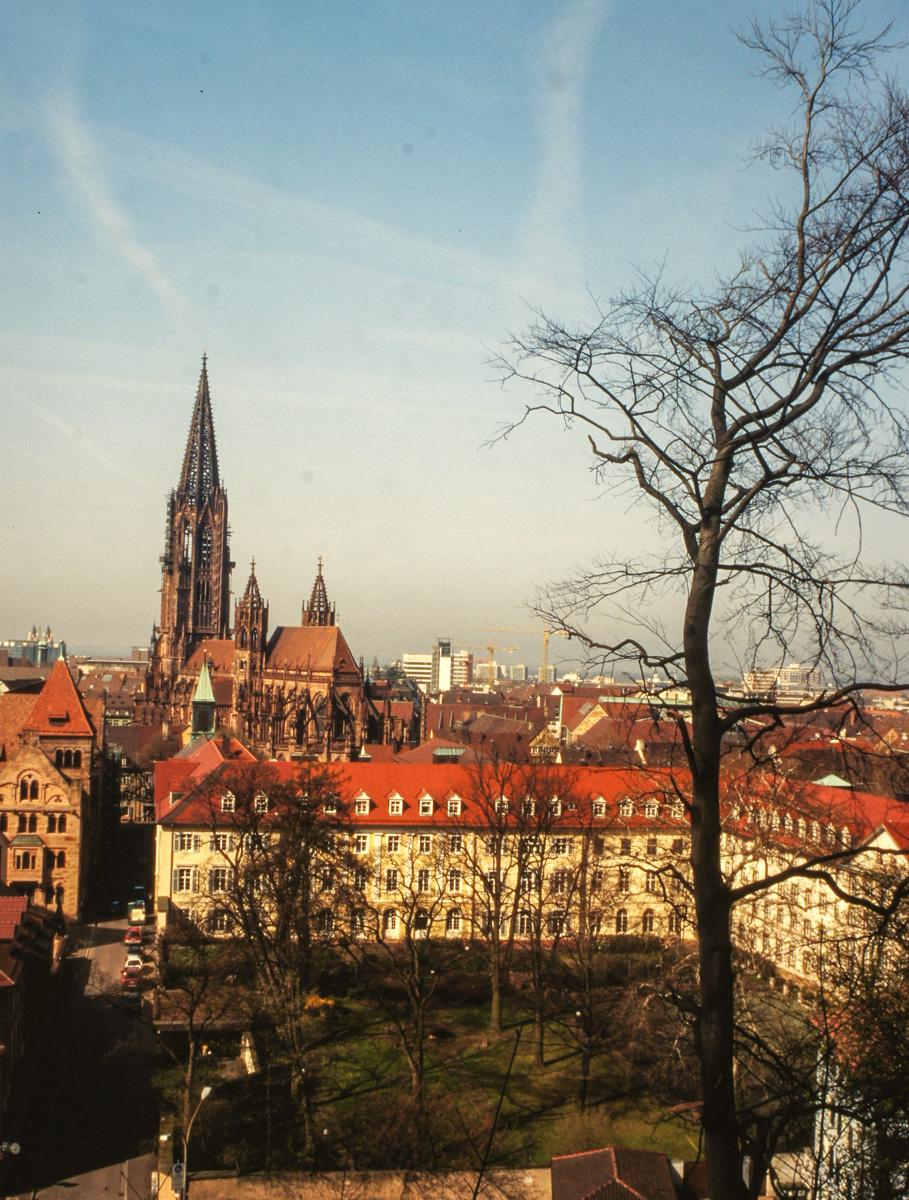 Freiburg Münster (Bild: Der Weg)