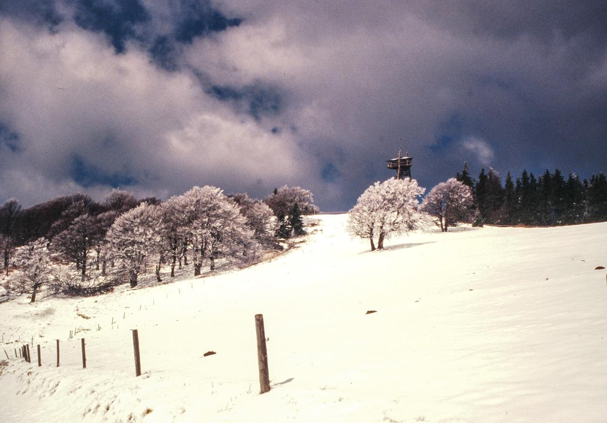 Schauinsland im Winter (Bild: Der Weg)